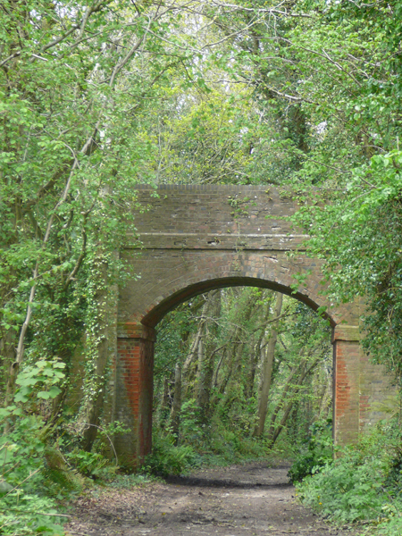 Bridge in Harpford Woods